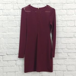Express | Maroon Mesh Panel Skater Style Dress